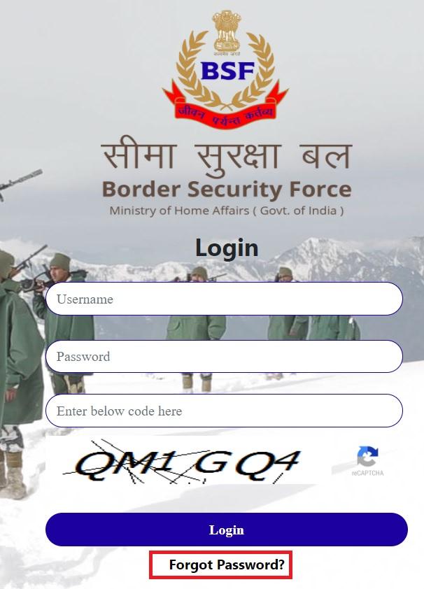 BSF Pay Slip Online