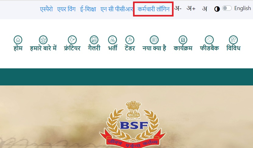 BSF salary slip online download